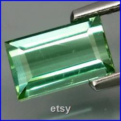1.18Cts Natural Tourmaline (Paraiba Green Blue Oval Facet Loose Gem Hot Rich Sparkling 100 Genuine Gem Nice Collection C-VDO
