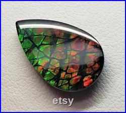 11 x 18 Ammolite Triplet Oval Dragon Skin Deep Green with hints of Yellow and Red