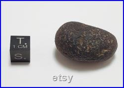 Cintamani Saffordite 17.3 Grams- Cintamani Stone Senora Desert Arizona, USA- Translucent- Z28