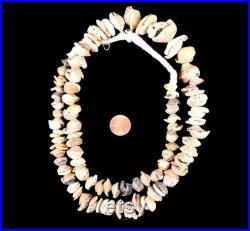 Mauritanian Shell Beads Graduated African 30 Inch 132062