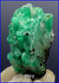 Natural Emerald Crystals Cluster Mineral Specimen 141 g , 76 48 mm