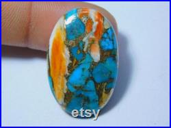 Spiny Oyster Copper Turquoise Cabochon Top Quality Loose Stone Semi Precious Oyster Gemstone Jewelry Making, 31 Ct 32X20 mm 3925